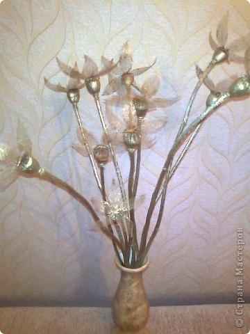 цветы из физалиса и мака фото 1
