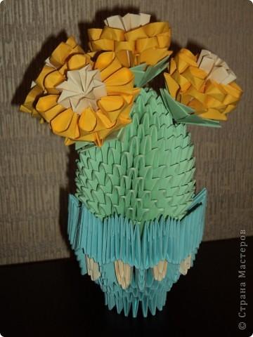 Кактусёнок с гипертрофированными цветами