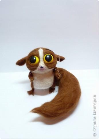 Лемур Морт -  вымышленный персонаж американского мультфильма «Мадагаскар». Маленький лемур, который всего боится. Очень робкий. Сам того не желая, раздражает Джулиана. Очень любит обнимать пятку короля Джулиана. фото 1