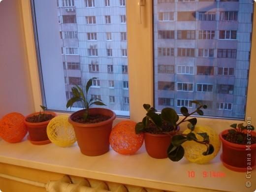 Вот такое оранжевое настроение)))) фото 3