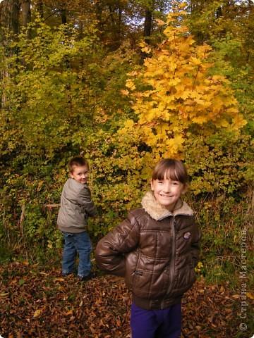 Отправляемся на прогулку в лес!  первая фотоостановка недалеко от дома. Вот такая красочная плетущаяся стена находтся на нашей улице! фото 15