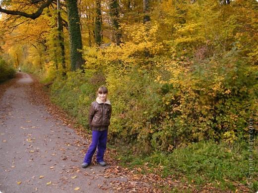 Отправляемся на прогулку в лес!  первая фотоостановка недалеко от дома. Вот такая красочная плетущаяся стена находтся на нашей улице! фото 20