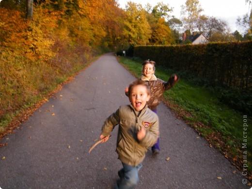 Отправляемся на прогулку в лес!  первая фотоостановка недалеко от дома. Вот такая красочная плетущаяся стена находтся на нашей улице! фото 22