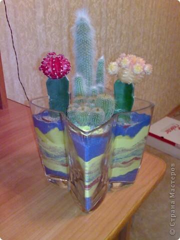 ваза с кактусами)) фото 2