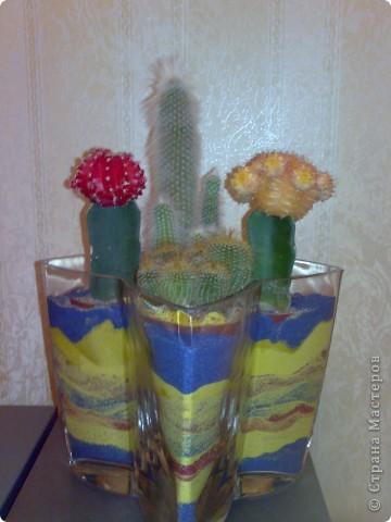 ваза с кактусами)) фото 1