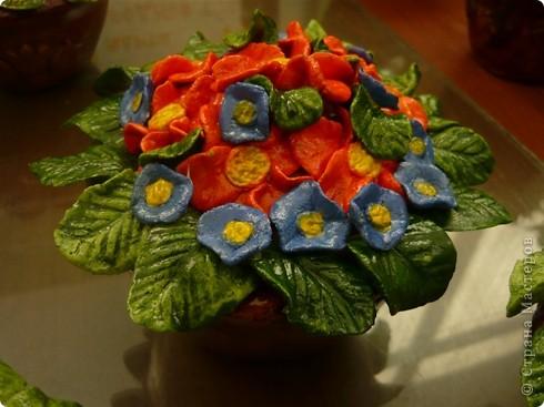 Соленые цветы 1 фото 3
