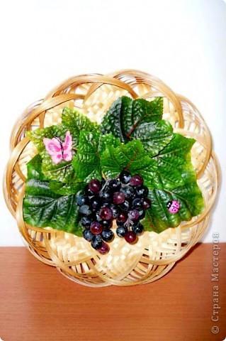 Синий виноград фото 1
