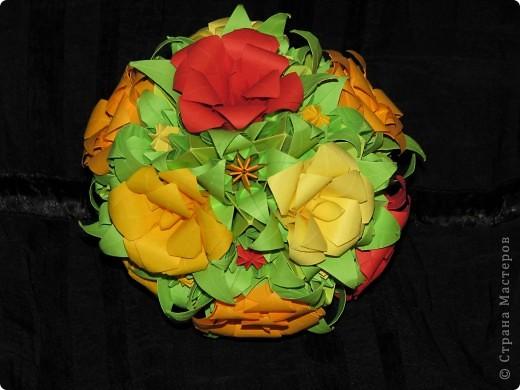 Теперь и у меня есть маки и розы! фото 3
