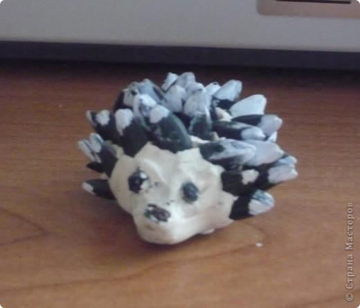 Пластилиновый ежик блондин сделан моим сыночком. Иголочки из семечек подсолнечника, а носик и глазки - перчинки.