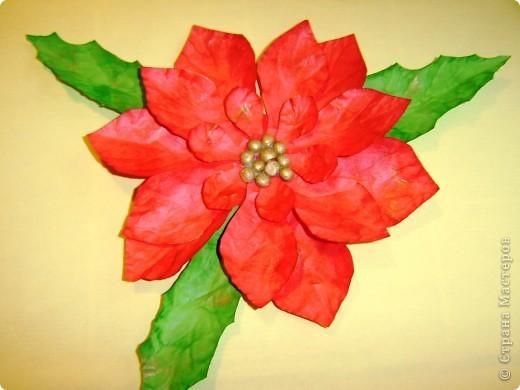 Опять решила помочь в украшении детской группы куда ходит моя младшая дочка. И решили мы украсить занавески цветами пуансетии. И вот хочу Вам предложить небольшой Мк.  И получился вот такой вот огромный цветок пуансетии размером более 10 см (дм12см). Мы будем в садике украшать ими шторки и окна.   Нам понадобится:  Бумага красная или светло жёлтая A4 (такие пуансетии тоже бывают) Подушечки чернильные для штампиков Ручка для тиснения (можно заменить конечком крючка или шар. ручкой) Ножницы, клей ПВА Крашеный горох Далее читать в моём блоге http://irinaje.blogspot.com/2010/11/o.html   фото 1