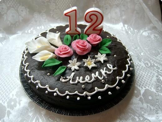 """торт """"Собачка"""" моя дочь давно мечтает о собаке,в этот день рождения она получила сладкую фото 2"""