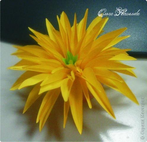 Солнечная песенка фото 3