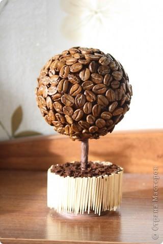 Дерево счастья (кофейное) фото 1