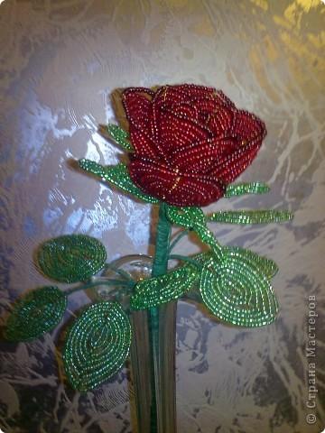 Техника: Бисероплетение Эта розочка одна из первых моих цветов из бисера.  Автор: Чупакабра Источник: Страна мастеров...