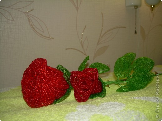 А роза упала на лапу Азора фото 2