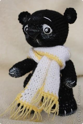 Медведь Мумба.  Черный.  Из Африки.  A шарф, потому что холодно... фото 1