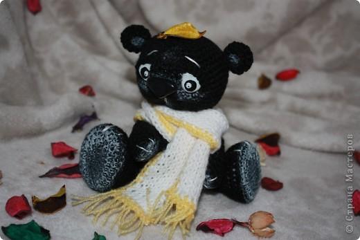 Медведь Мумба.  Черный.  Из Африки.  A шарф, потому что холодно... фото 2