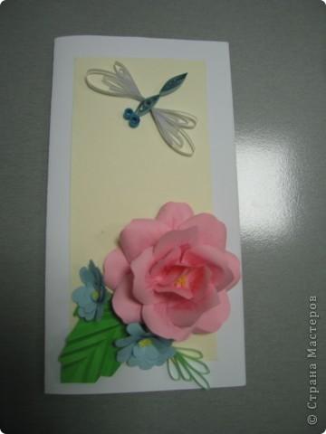 Роза фото 2