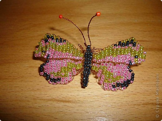 Бабочки на ромашках фото 2