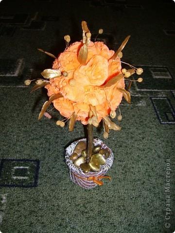 Солнечное дерево подруге на день рождения. Фото со вспышкой вечером. фото 10