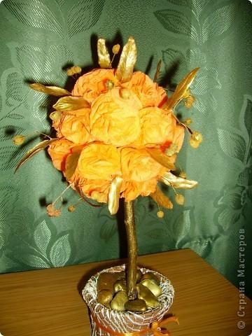 Солнечное дерево подруге на день рождения. Фото со вспышкой вечером. фото 1