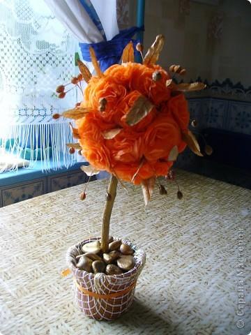 Солнечное дерево подруге на день рождения. Фото со вспышкой вечером. фото 2
