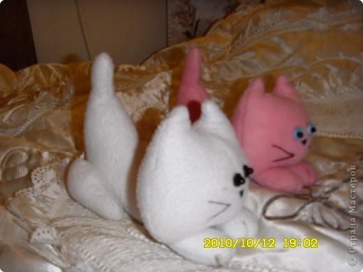 Снежик и Розочка! Приятно познакомиться!   фото 2