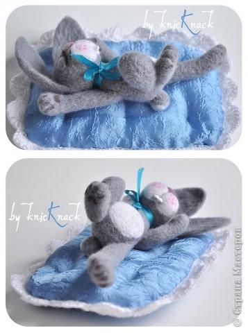 Спящий Крош фото 3