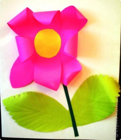 Такие цветы для мамы вырастили мои первоклашки. фото 2