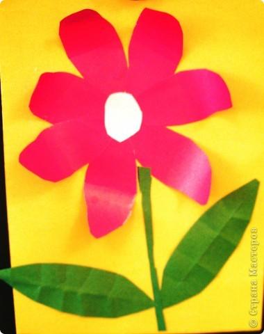 Такие цветы для мамы вырастили мои первоклашки. фото 3