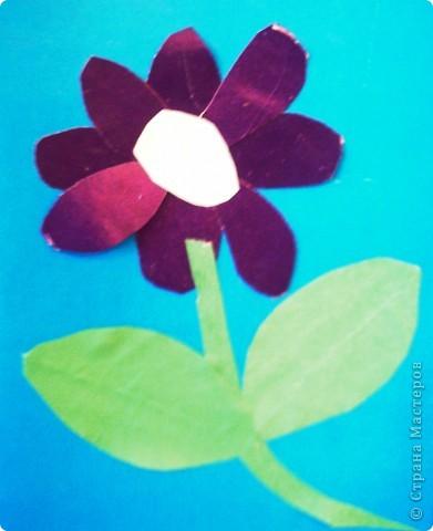 Такие цветы для мамы вырастили мои первоклашки. фото 4