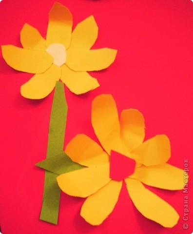 Такие цветы для мамы вырастили мои первоклашки. фото 7