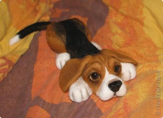 еще парочка войлочный псов фото 6