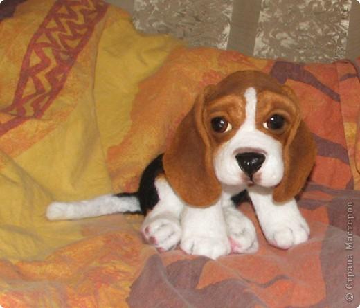 еще парочка войлочный псов фото 3
