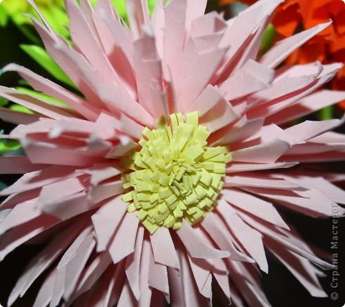 Насмотрелась я на астру Евгеши http://stranamasterov.ru/node/23788?tid=451%2C462 и решила попробовать сделать такие мамочке. Её любимые цветА и цветЫ и число:). Только я сделала их немного меньше, чем в МК. Делать очень легко, но нужно терпение вырезать столько звёздочек:))) фото 3