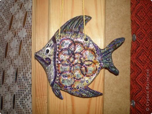Вот и мои рыбёхи фото 1