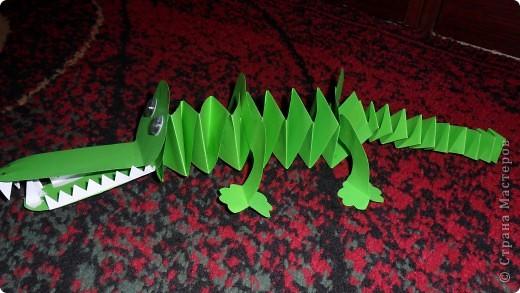 крокодильчик фото 1