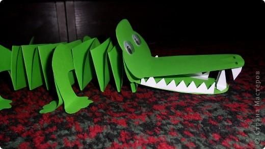 крокодильчик фото 3