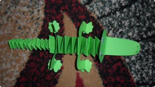 крокодильчик фото 4