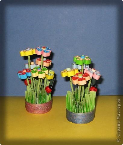 Цветочки фото 2