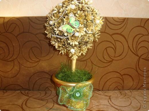 дерево из шишек фото 1