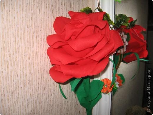 Моя роза!!!