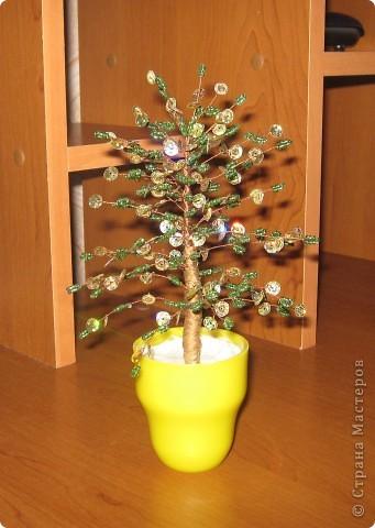 Дерево.