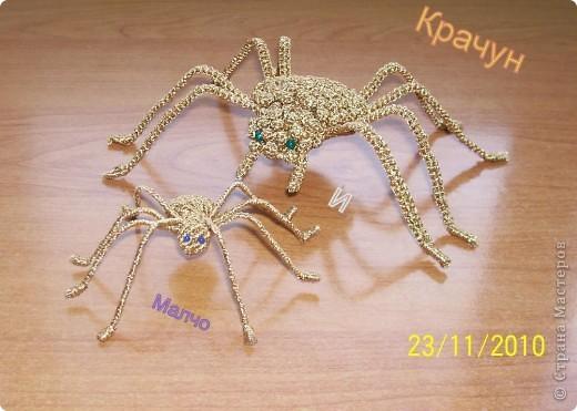 золотые пауки
