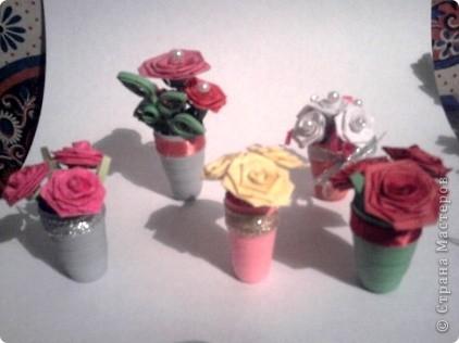 Здесь у меня и розы фото 1