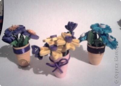 Здесь у меня и розы фото 2