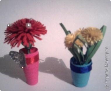 Здесь у меня и розы фото 6