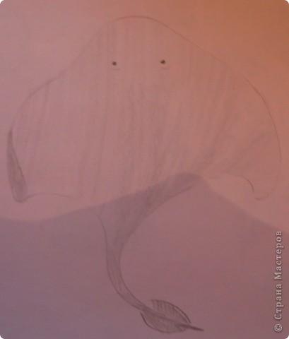Рыбы  фото 2