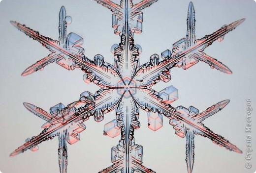 """Под Новый год окна домов, витрины магазинов украшают снежинками. Правда, чаще всего,   к настоящим снежинкам они не имеют никакого отношения. А, значит, и называться снежинками, с точки зрения физики,  не имеют права.  """"Газета.Ru"""" разместила статью профессора химии из Германии Томаса Купа, который  написал  письмо с напоминанием, что в природе бывают только шестиугольные снежинки. """"Мы, кто использует достижения науки и любит хороший дизайн, должны направить свои усилия на то, чтобы растаяли все четырех-, пяти- и восьмиугольные снежинки, которые встречаются на открытках, в детских книжках, в рекламе, и просвещать тех, кто невольно генерирует такие снежинки и распространяет их. От всего сердца приглашаю всех обсудить истинную красоту науки за кружкой горячего пунша"""", - говорится в письме Купа. фото 19"""