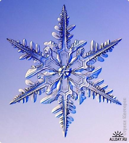 """Под Новый год окна домов, витрины магазинов украшают снежинками. Правда, чаще всего,   к настоящим снежинкам они не имеют никакого отношения. А, значит, и называться снежинками, с точки зрения физики,  не имеют права.  """"Газета.Ru"""" разместила статью профессора химии из Германии Томаса Купа, который  написал  письмо с напоминанием, что в природе бывают только шестиугольные снежинки. """"Мы, кто использует достижения науки и любит хороший дизайн, должны направить свои усилия на то, чтобы растаяли все четырех-, пяти- и восьмиугольные снежинки, которые встречаются на открытках, в детских книжках, в рекламе, и просвещать тех, кто невольно генерирует такие снежинки и распространяет их. От всего сердца приглашаю всех обсудить истинную красоту науки за кружкой горячего пунша"""", - говорится в письме Купа. фото 18"""